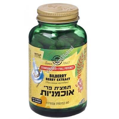 Экстракт плодов черники (SFP) 60 капсул - Солгар