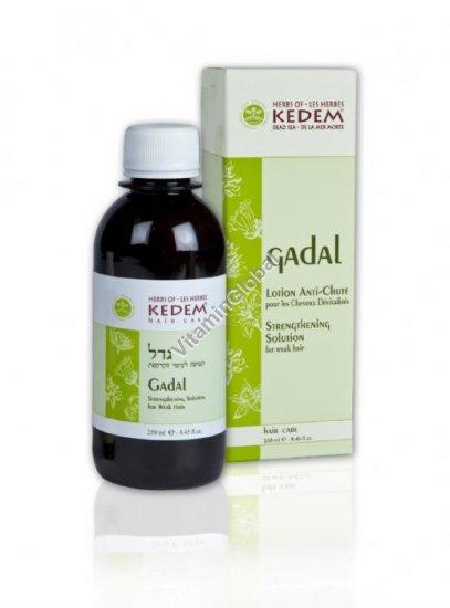 Gadal для укрепления волос и придания блеска 250 мл - Herbs of Kedem