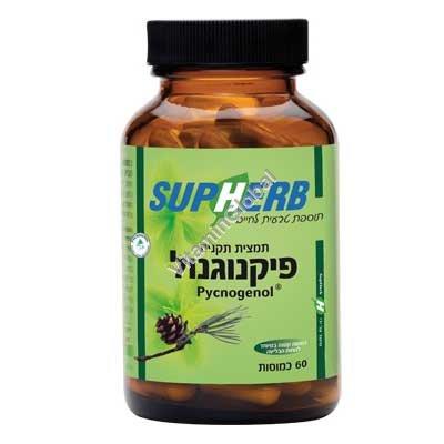 Пикногенол 30 мг 60 капсул - SupHerb