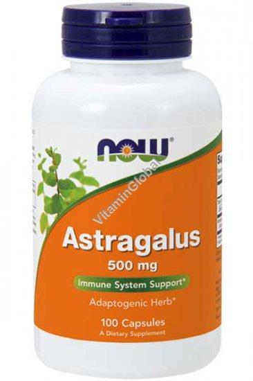 Корень астрагала 500 мг 100 капсул - Now Foods