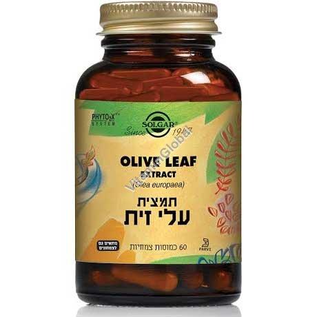 Экстракт оливкового листа (SFP) 60 капсул - Солгар