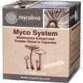 Мико Систем - для поддержки организма при хронических заболеваниях, после болезни или операции 50 капсул - Миколивия