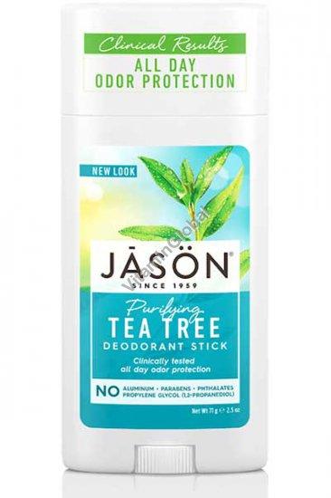 Дезодорант-стик чайное дерево 71 гр - Jason