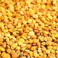 Цветочная пыльца (пчелиная обножка) 250 гр - Herba Center