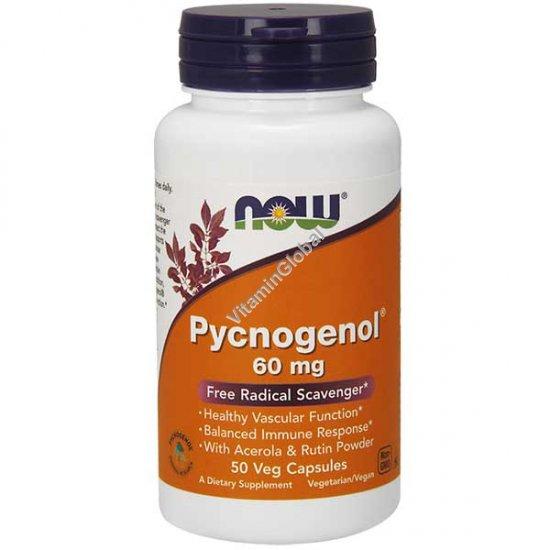 Пикногенол 60 мг 50 вегитарианских капсул - NOW Foods