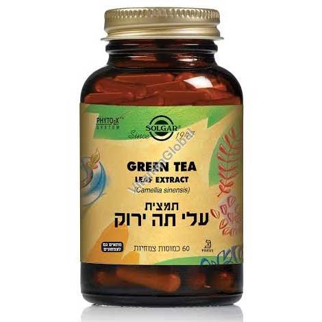 Экстракт листьев зеленого чая 60 растительных капсул - Солгар