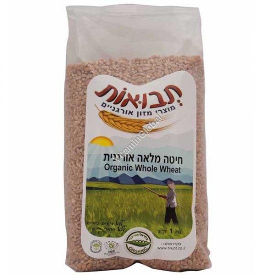 Цельные зерна органической пшеницы 1 кг - Tvuot