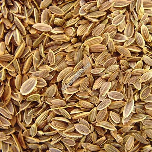 Семена укропа 100 гр - Herba Center